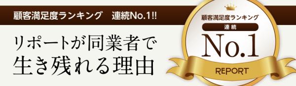 REPORT紹介画像